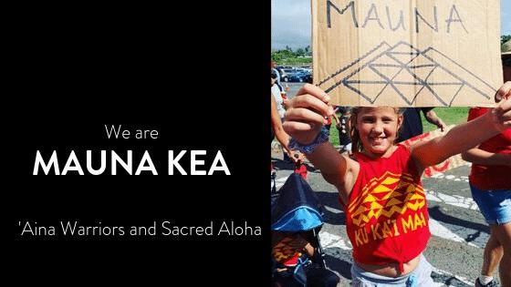 Photo of Mauna Kea protector